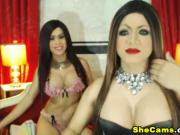Sexy Shemale Sucks and Rides Her Friend's Cock