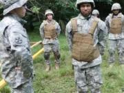 Gay military cocks movie Jungle smash fest