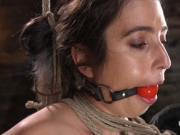 Brunette suffers hogite upside down suspension