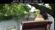 Sveltina :(( black ebony cumshots ebony swallow interr