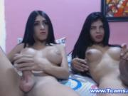 Two Busty Trannies Jerking Off Sexily