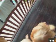Blonde Blows and Fucks on a Balcony