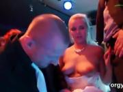 Cute sex kittens suck dick and enjoy penetrating and fuck org