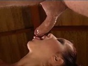 Blowjob Fantasies - Flick Shagwell