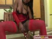 Sexy ebony shemale jerking off