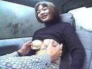 Asian bangbus