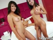 Two asian trannies enjoying Spencers big dick in their holes